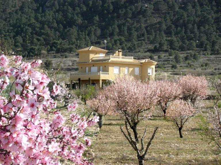 5 bed Country Property in Elda - Country image 1