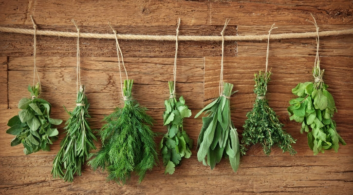 Herbs for the terrace, allotment and garden - a baker's dozen for starters