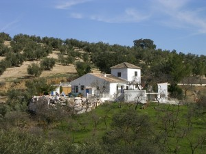 Rural ambitions of spanish house-hunters