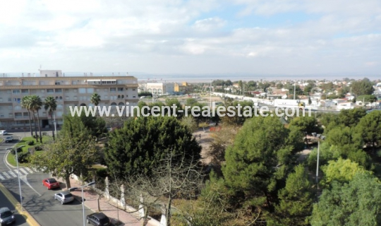 Apartment - Rental - Torrevieja - Torrevieja - Centre